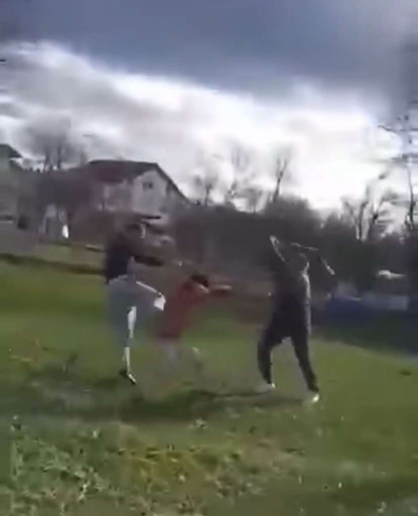 BiH državljani snimali kako tuku i zlostavljaju migrante u Bihaću Bihac3
